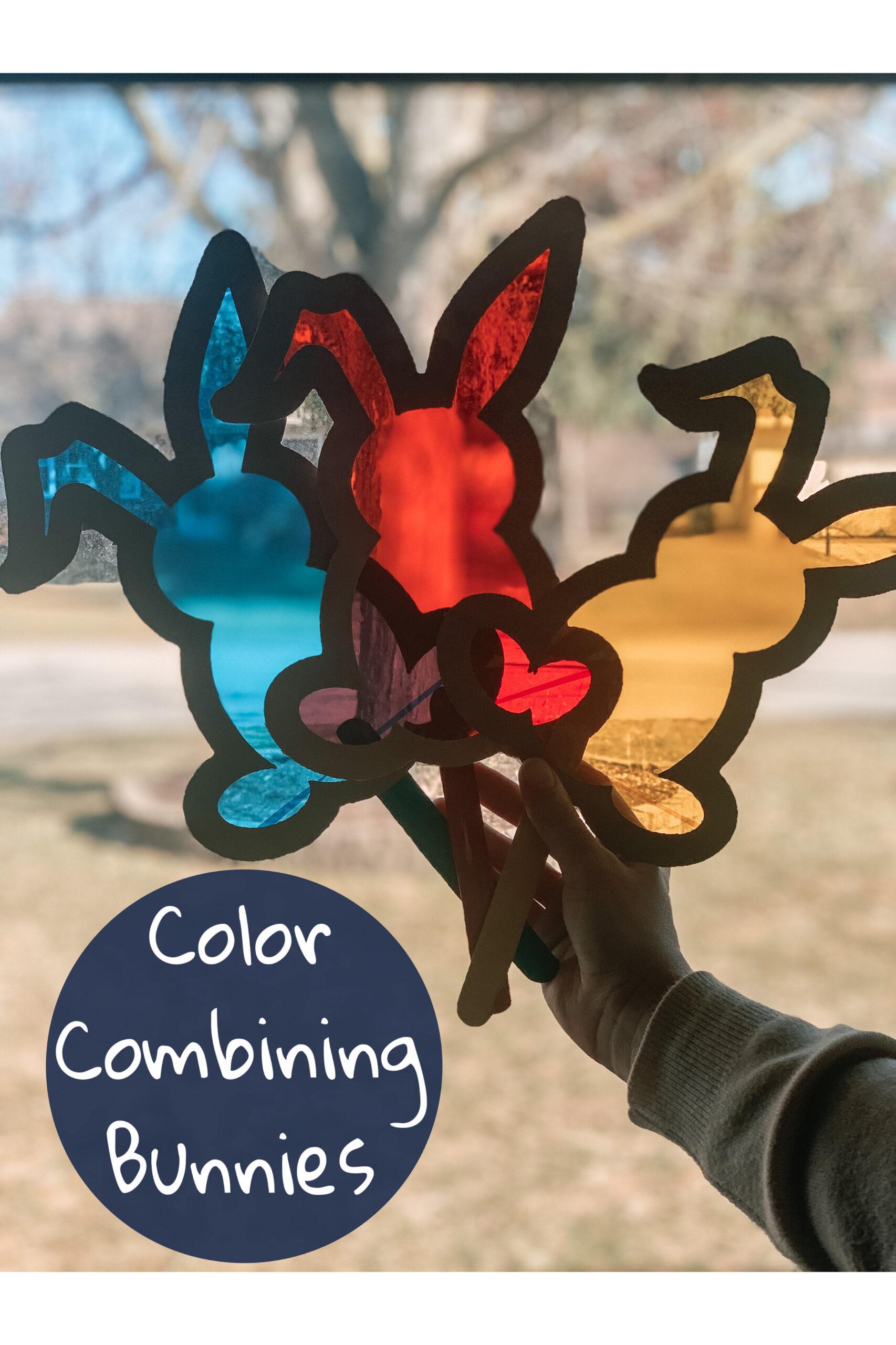 Bunny Color Combinations