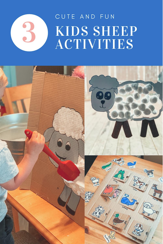 Sheep Activities