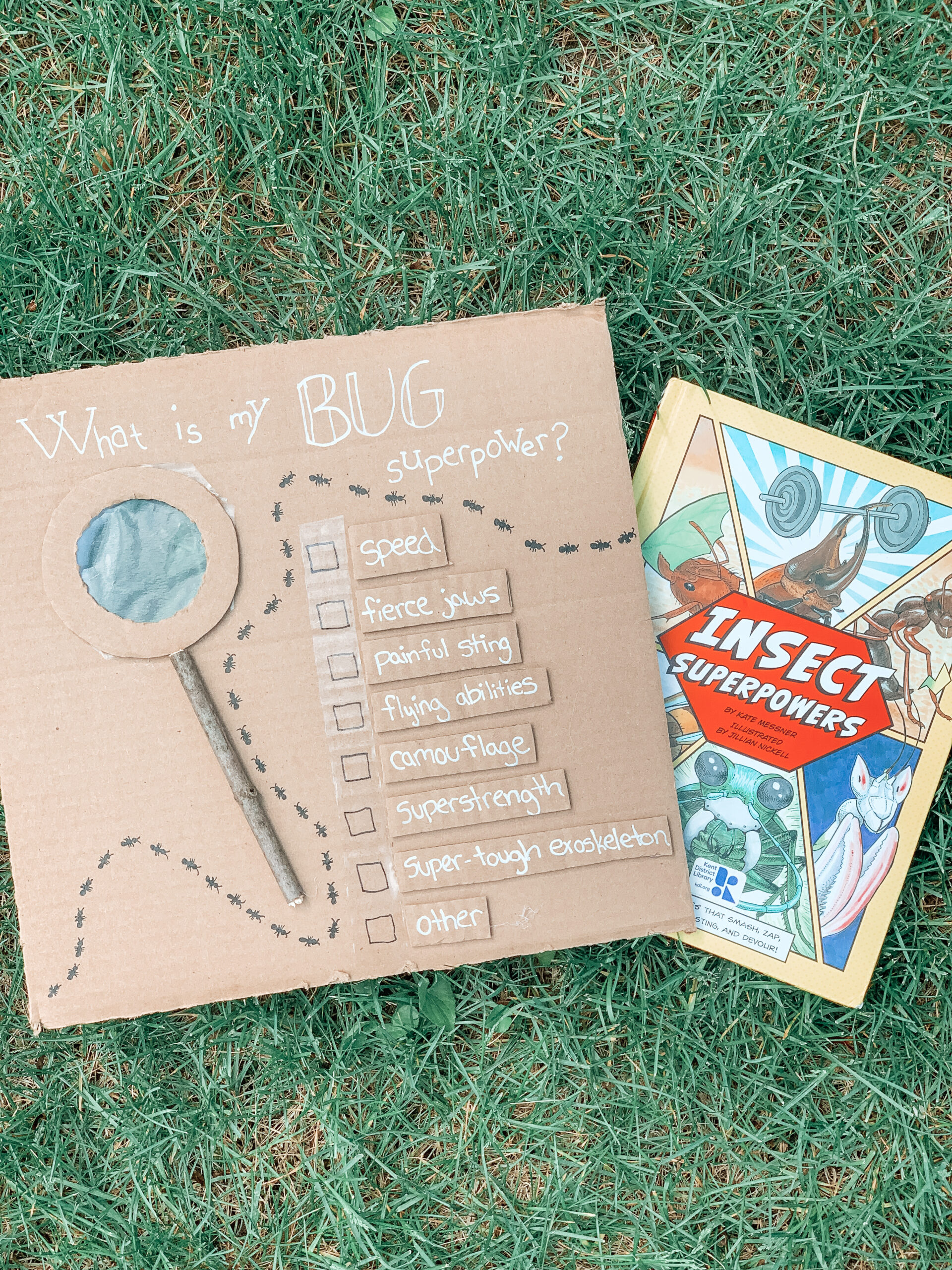 Insect superpowers book and activity