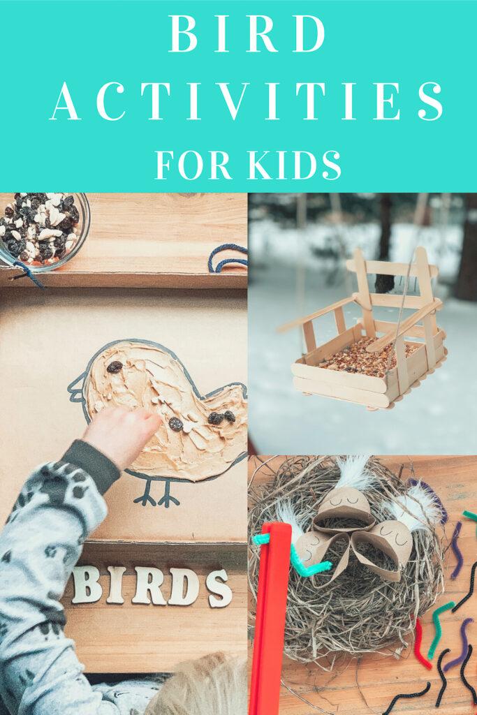 Bird activities for kids