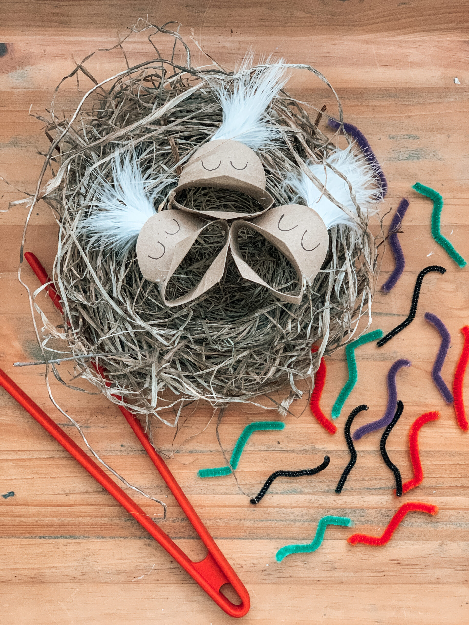 feed the birds fine motor activity for kids