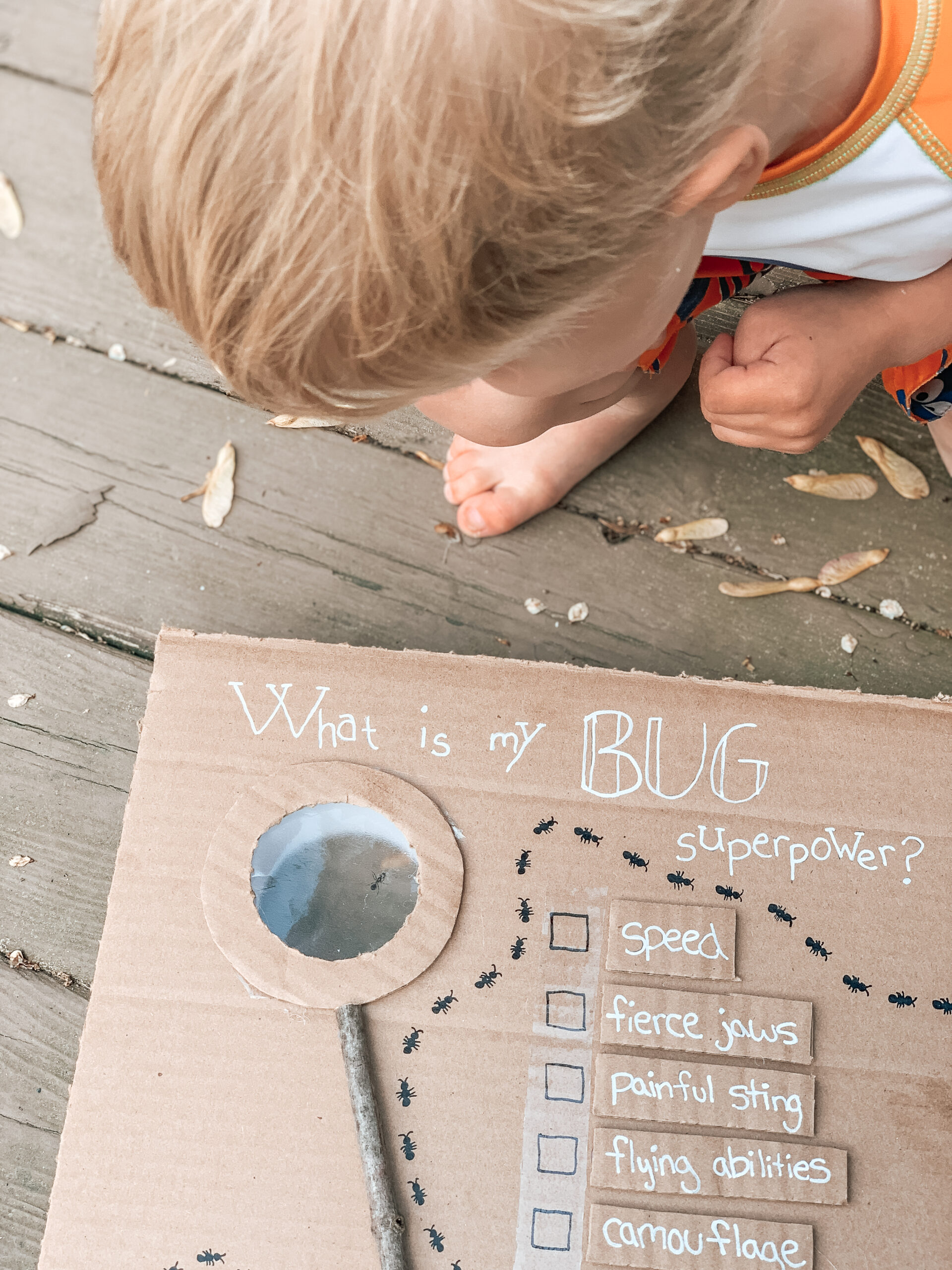 Learn about bugs activity